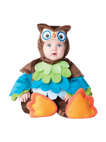 InCharacter Costumes Baby's What A Hoot Owl Costume, Brown/Multi, 6 to 12 months