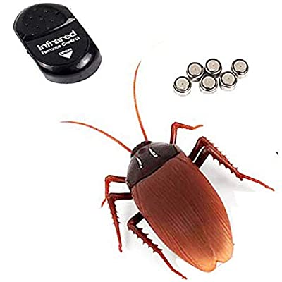 NiGHT LiONS TECH Novelty Emulational Remote Control cockroach Animal Toy Funny toy For Christmas: Toys & Games
