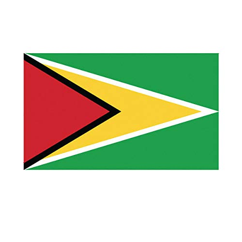 Morgan Graphics Guyanese Flag Sticker Decal Vinyl Guyana Guy GY Vinyl Decal Sticker Car Waterproof Car Decal Bumper Sticker 5