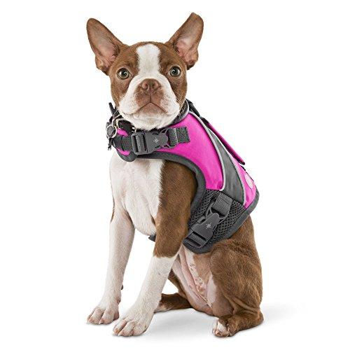 Good2Go Pink Dog Flotation Vest, X-Small, Pink/Gray ()