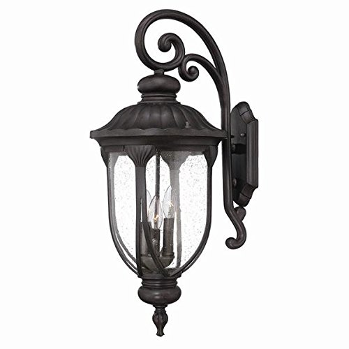 Acclaim 2222BC Laurens Collection 3-Light Wall Mount Outdoor Light Fixture, Black Coral