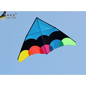 Amazon com : 2 8m Power Delta Kite Triangle Kite single line