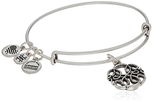 Alex And Ani Path Of Life Iv Rafaelian Silver Bangle Bracelet