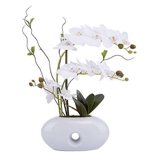 Flower Arrangement with Decorative Vase Artificial Orchid Plant 24in (White) by LOUHO