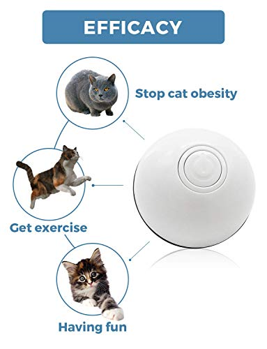 HOLOYO Cat Toy Balls Smart Interactive Cat Ball Toy,360 Degree Self Rotating Balls USB Rechargeable Automatic Rolling Ball Toy with LED Light for Cat Kitty Pet Entertainment Exercise 3