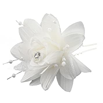Rosen-Blumen-Haarspangen - TOOGOO(R) Fashion 5 Stueck Haar Zusatz U ...