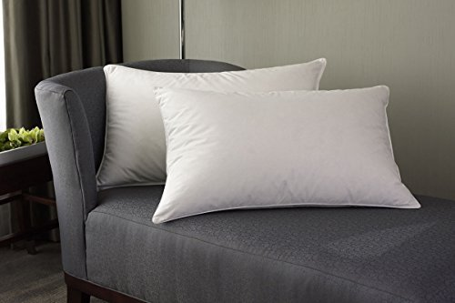 Westin Hotel Feather & Down Pillow - King by Westin by Westin