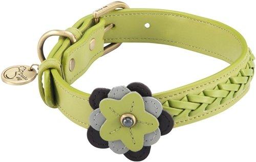 "12""-14"" Petal Green Orchid Dog Collar 3/4"" wide, Medium"