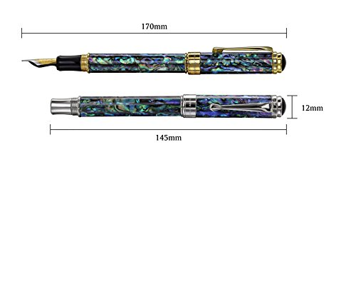 Xezo Maestro Natural Sea Shell Handmade Fountain Pen with 18K Gold Plated Parts. Exquisite Gift. No Two Pens Alike. Fine Nib by Xezo (Image #7)