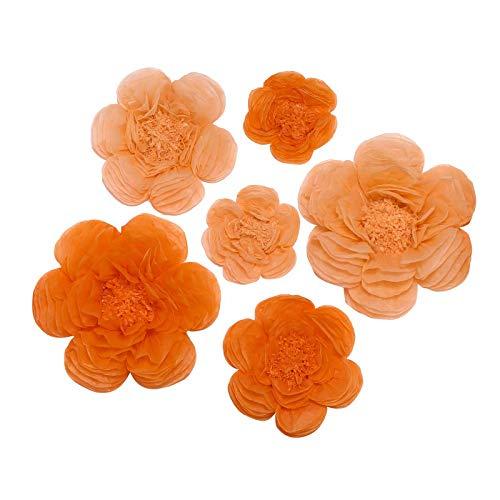 BalsaCircle 6 pcs 7 9 11-Inch Peach and
