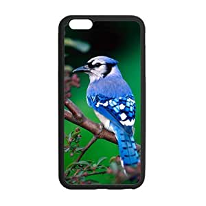 iPhone 6 Plus Case, Beautiful Blue Bird On Tree In Nature TPU Frame & PC Hard Back Protective Cover Bumper Case for iPhone 6 Plus 5.5 Inch On 2014