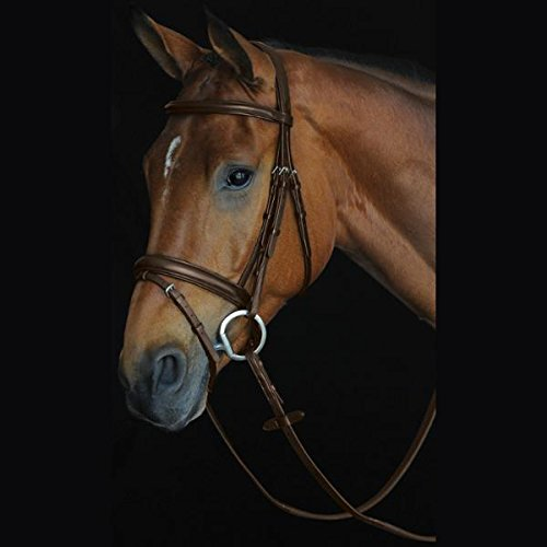 Padded Raised Bridle (Collegiate Comfort Crown Padded Raised Flash Bridle Brown Pony)