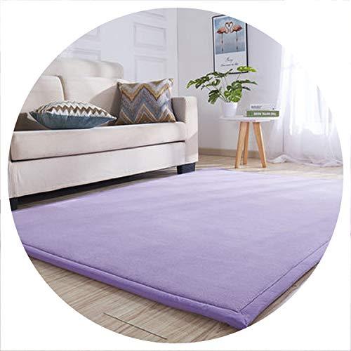 world-palm Thick Coral Fleece Carpet Tatami mat Bedroom Living Room Bay Window Rug Baby Shatter-Resistant Crawling mat Bedroom Blanket,1,60 x160cm