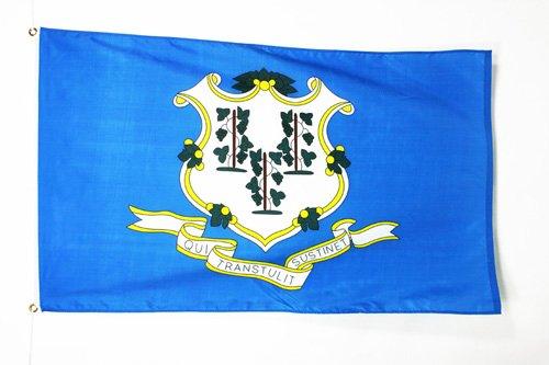 AZ FLAG Connecticut Flag 2' x 3' - US State of Connecticut Flags 60 x 90 cm - Banner 2x3 ft