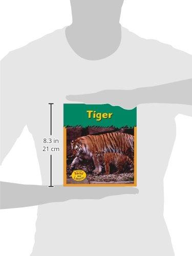 Tiger (Zoo Animals)