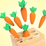 Yinpinxinmao Toddler Fine Motor Skill Toy,Harvest Carrots to Farm Matching Game Montessori Wooden Shape Size Sorting Puzzle- Preschool Educational
