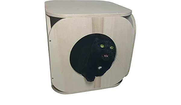 Cubo de madera para gato - madera natural: Amazon.es: Productos para mascotas