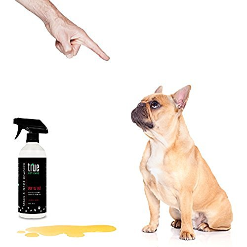 True-Pet-Care-Pee-Ez-Out-Cranberry-Stain-Odor-Remover-20-ounce-Spray