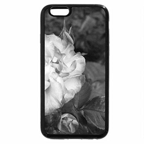 iPhone 6S Plus Case, iPhone 6 Plus Case (Black & White) - Roses from Victoria BC