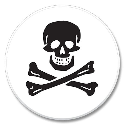 (Skull and Crossbones Auto Coaster - Single Coaster for Your Car)