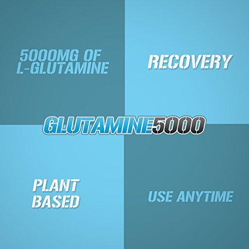 Evlution Nutrition L-Glutamine 5000, 5g Pure L Glu...