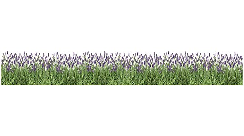 - Home Decor Line CR-53012 Lavender Border Decal, Purple