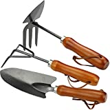 COM-FOUR 3-piece garden set with ergonomically shaped wooden handle, consisting of double hoe, small cultivator and flower trowel (03-piece garden set)