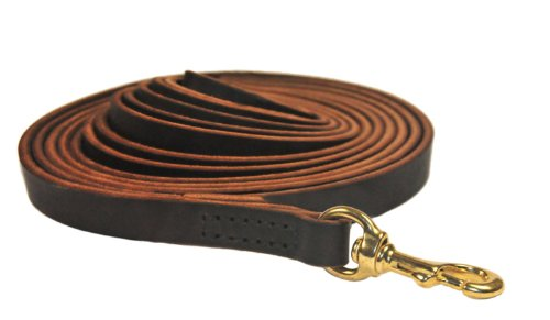 Dean and Tyler Stitched Track Dog Leash, Brown 50-Feet by 1/2-Inch Width with Solid Brass Hardware