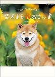 柴犬まるとおさんぽ 2019年 カレンダー 壁掛け CL-376
