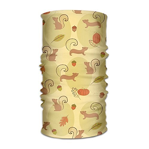 (Headwear Headband Squirrel Playing Head Scarf Wrap Sweatband Sport Headscarves For Men)