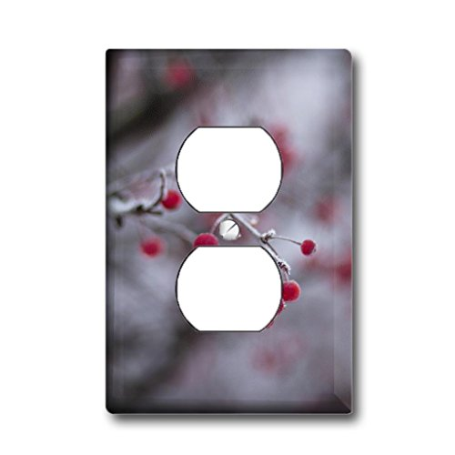 - Home Accents holly berries 2 - Outlet Cover
