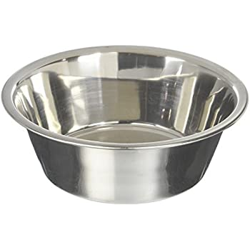 Pet Supplies : Maslow Standard Dog Bowl, Stainless Steel