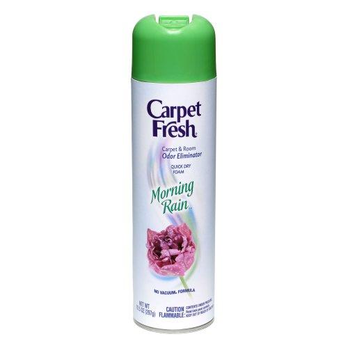 Carpet Fresh No-vacuum Morning Rain Carpet Refresher 10.5-Ounce Can (Pack of 12) by Carpet Fresh