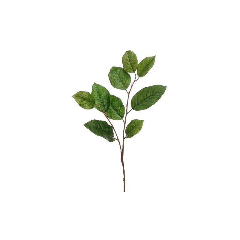 "silk flower arrangements 30"" salal leaf spray two tone green (pack of 12)"