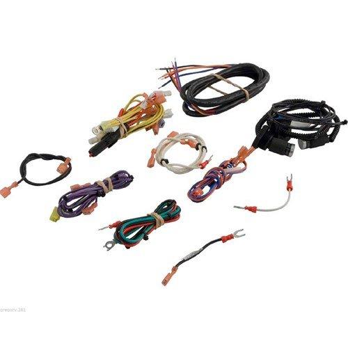 41qqI5WiTNL jandy zodiac r0470000 wire harness set lrze model all lrze amazon  at n-0.co