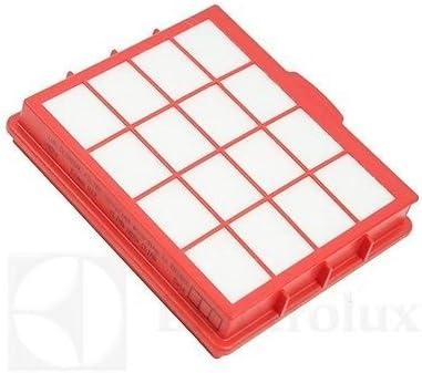 Electrolux Lux Filtro HEPA Rojo Aspiradora lux1r LUX1: Amazon.es: Hogar