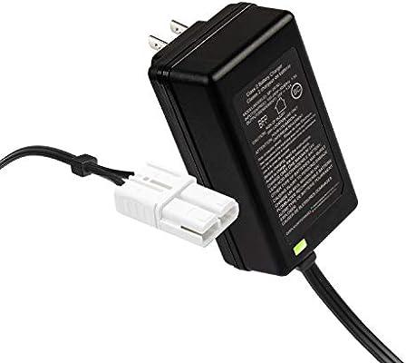 Amazon.com: X PWR - Cargador de batería de 24 V para coches ...