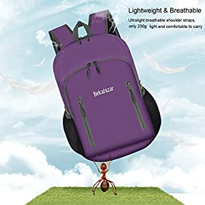 Bekahizar 20L Ultra Lightweight Backpack Foldable Hiking Daypack Rucksack Water Resistant Travel Day Bag for Men Women…