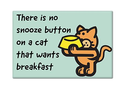 There Is No Snooze Button on a Cat That Wants Breakfast Fridge Magnet