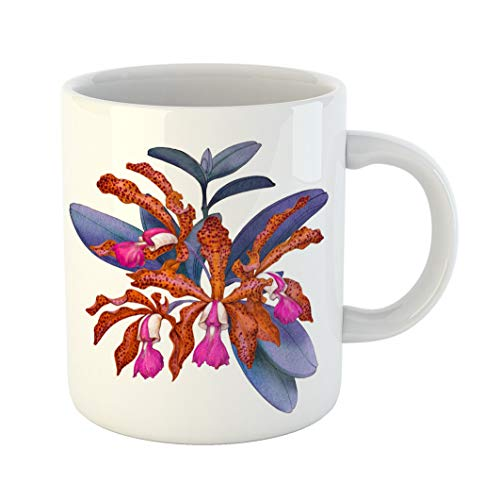 - Emvency Funny Coffee Mug Colorful Exotic Tropical Orchid Flower Cattleya Watercolor on White Pink Botanical 11 Oz Ceramic Coffee Mug Tea Cup Best Gift Or Souvenir