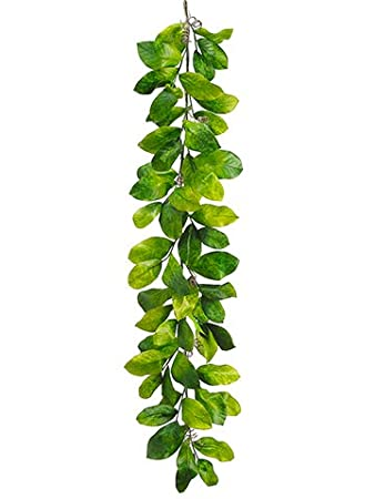 Lovely Amazon.com: Artificial Magnolia Leaves Garland in Two Tone Green  GX14