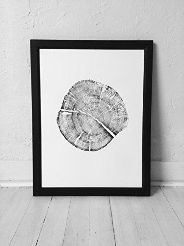 Grand Teton National Park Pine Tree Print. Original Tree Ring Print. ()