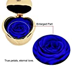 Blue-Rose-Handmade-Preserved-Rose-Present-Exquisite-Fresh-Roses-Upscale-Immortal-Flowers-Best-Gift-for-Female-Birthday-Anniversary-Christmas