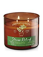 Bath & Body Works Aromatherapy Stress Relief, Eucalyptus + Spearmint Scented Candle from Bath and Body Works