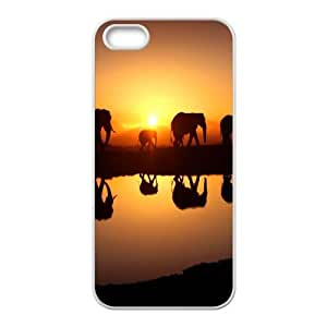 Elephant iPhone 5 5s Cell Phone Case White Wdjw