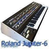 Roland Jupiter 6 - HIGE Original Sound Library WAVE Samples on CD