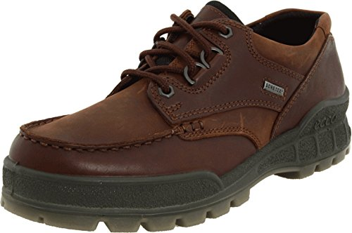 ECCO Men's Track II Low GORE-TEX waterproof outdoor hiking shoe, Bison/Bison, 43 EU (US Men's 9-9.5 M)