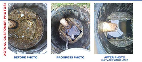 Bio-Safe One Level 4 Shock System- LVL4 Septic Tank Drain Field Restoration Cleaning System - Patented Bacterial Enzyme Based for All Septic Septic Systems, Cesspools, 4th Level Package by Bio-Safe One, Inc. (Image #7)