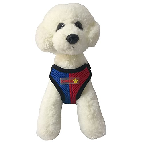 Harness No Pull Pet Vest Step-in Mesh Harness for Puppy and Cats Fashion Multi-colored with One Leash (Small, Blue and Red) (Pull Multi Colored)