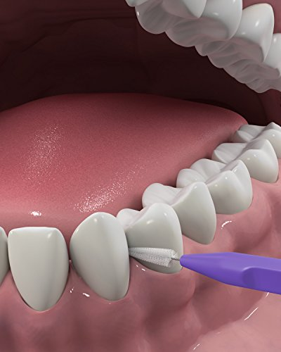41qrg2oD3ML - DenTek Slim Brush Interdental Cleaners | Brushes Between Teeth | Extra Tight Teeth | Mouthwash Blast Flavor | 32 Count